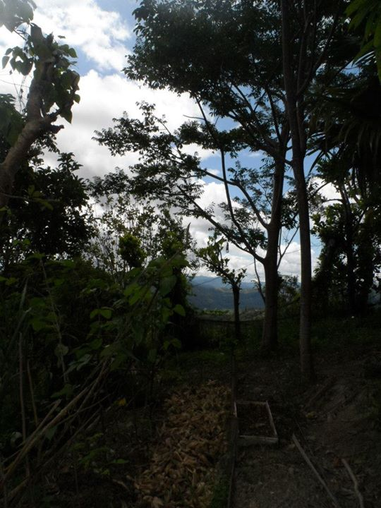 Danao Mountain Peak 6