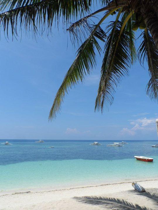 Bohol Divers Resort Alona Beach Panglao Bohol 9