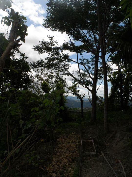 Danao Mountain Peak 6
