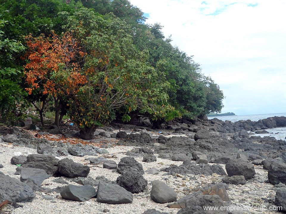 Kabangkalan Beach 2 Pitogo Island Bohol