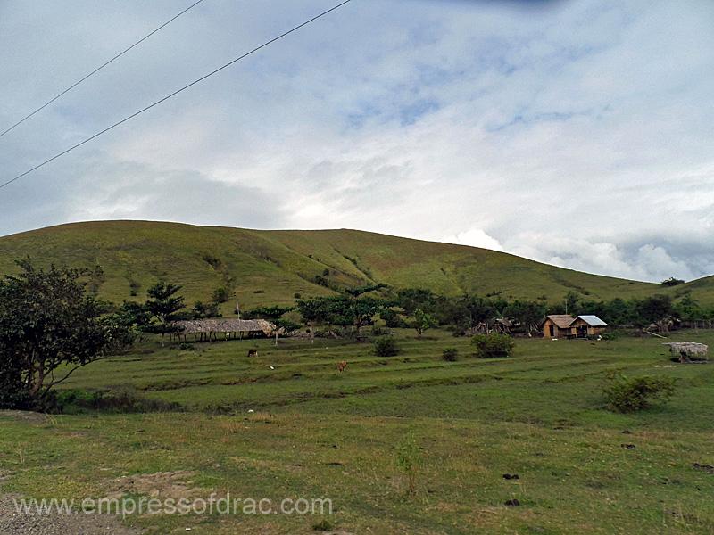 Tugas - Pitogo Island President Carlos P Garcia Bohol