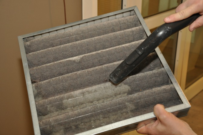 Mold and Fungal Toxins